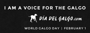 worldgalgoday