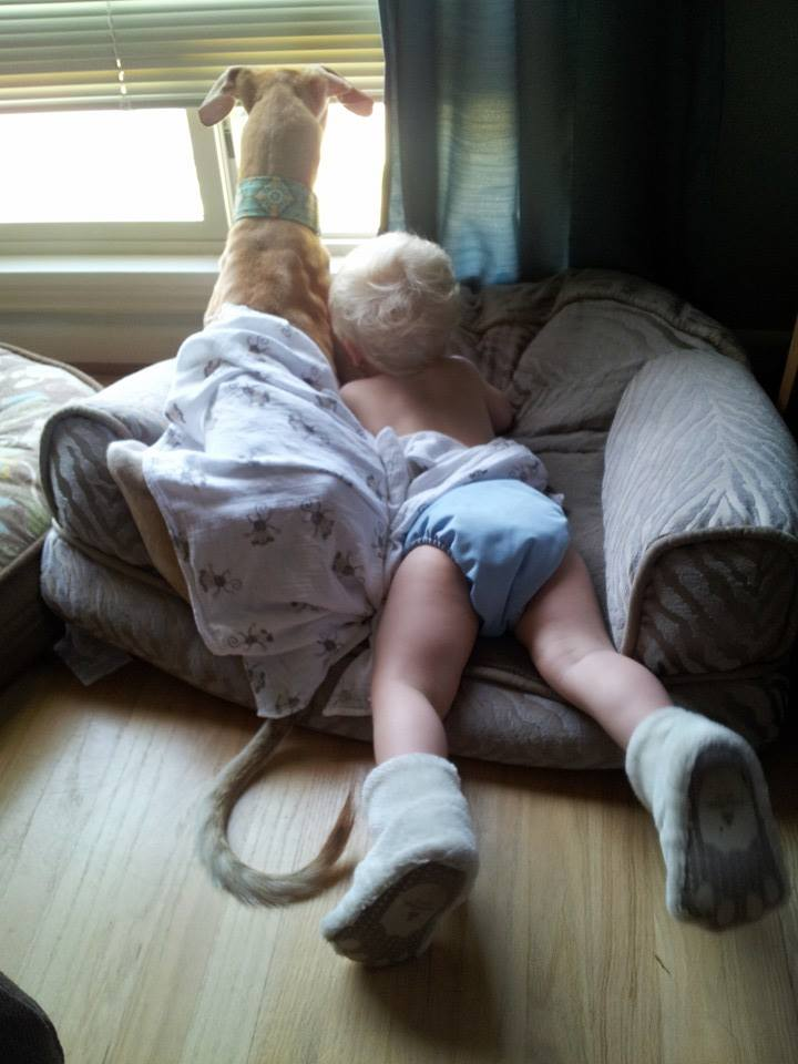 Nothing's Better Than a Boy and His Dog