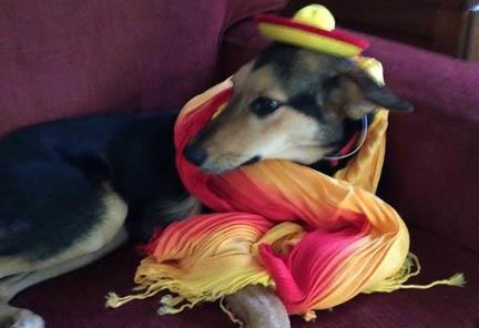 JoJo Wishes You A Happy Cinco de Mayo!